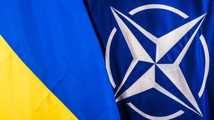 Співпраця Україна—НАТО. Регіональний вимір